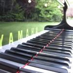 The Yamaha Disklavier