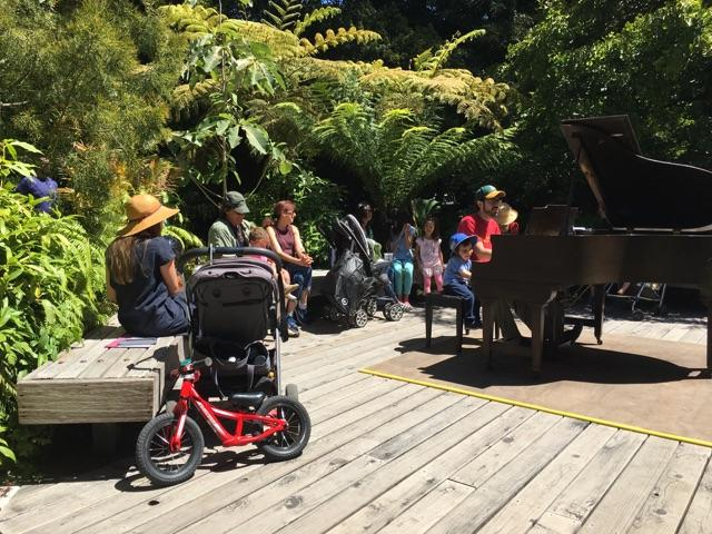 "Making some music in the SF Botanical Garden's ""Ancient Plant Garden."""